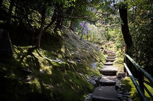 escursioni-monte-fuji